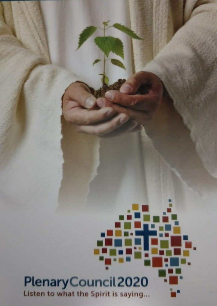 Synodality in Practice